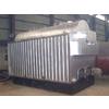 供应DZL系列热水锅炉