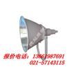 供应【GT102】GT102--J1000W防震型投光灯