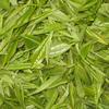 供应绿茶提取物