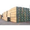 供应大量批发建筑木方