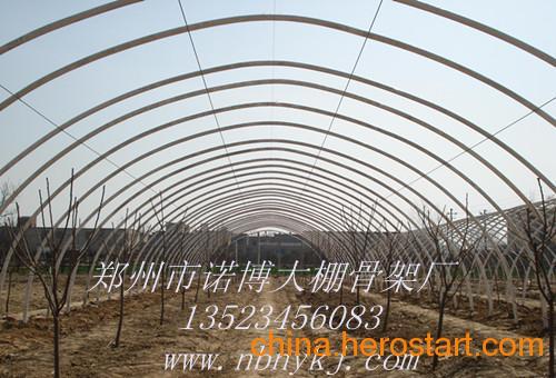 供应什么材料的蔬菜温室大棚骨架支架价格便宜 质量好