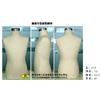供应包布展示模特、半身包布展示模特道具、普通包布模特