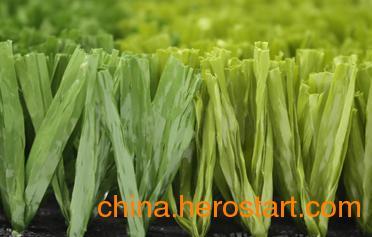 供应绿城足球场人造草,广州足球场专用人造草产品