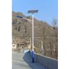 供应太阳能路灯4 LED照明灯 公园灯 D10太阳能灯