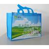 供应烟台开发区海兴源包装制品 烟台无纺布袋设计印刷 各种塑料袋印刷