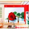 供应电视背景墙 艺术玻璃电视背景墙 钢化玻璃电视背景墙 冰晶电视背景墙