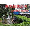供应上海顺发清洗管道50476568管道疏通下水道