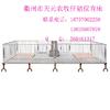 供应衢州天元农牧 养猪设备 仔猪保育床 育肥床
