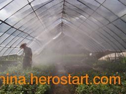 供应食用菌类种植园加湿 人造喷雾加湿设备 无人操作加湿器