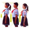 供应中国少先先锋队,队干标志,少先队干部标志,学生标志,学生臂章,臂章,少工委,团委,学校用品,办公文教