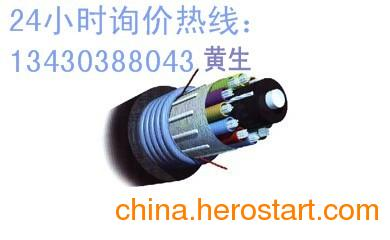 供应安普光缆 安普4芯光缆 安普8芯光缆
