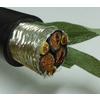 供应 双变频电机屏蔽电缆 专业生产厂家
