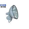 供应防水防尘防震高亮度投光灯(1000W)