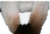 热销 百搭 渐变色 中长款 兔毛 女士围巾