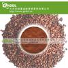 供应葡萄籽提取物,原花青素