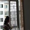 山东烟台莱阳天策门窗厂加工磁吸防护纱窗。