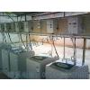 供应海尔投币洗衣机价格  海尔投币式洗衣机批发