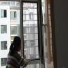 山东烟台,天策门窗厂。加工优质推拉磁吸防护纱窗。