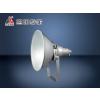 供应恒盛照明销售生产WF258B防震型投光灯