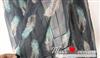 WX012围巾批发2011 彩色韩版围巾 彩色羽毛丝巾 优质
