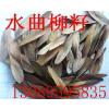 供应出售水曲柳苗 籽 茶条槭籽 糖槭籽 山桃籽