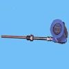 固定螺纹防爆热电阻WZP2-240