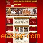 【首选】广西专业网站策划/建设 南宁域名注册较好的网络公司