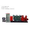 供应柴油机/电动机消防泵组