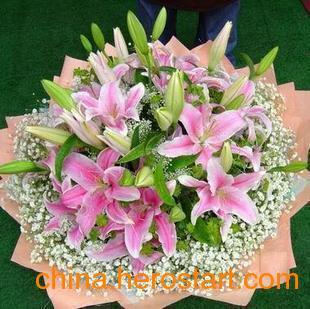 供应上海礼品鲜花 会议鲜花 展会鲜花 前台鲜花