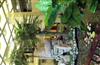 雕塑,园林设计 生态园 园林工程 工艺品雕塑 艺术朱之文、韩寒