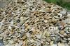 南京惠众雨花石厂――园林石 园林用扁鹅卵石