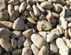 供应园林石
