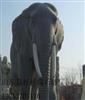长期供应动物园林雕刻大象,石象
