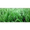 供应云南昆明人草坪、景观草坪、楼顶草坪、足球场人造草