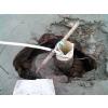 供应上海地区工程降水
