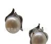 小额混批 韩版时尚气质淑女款925银EYC36942天然珍珠耳钉