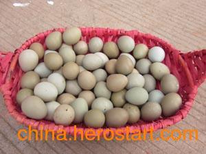 最具野味的山鸡蛋feflaewafe