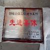 政府机关颁发用的木托奖牌feflaewafe