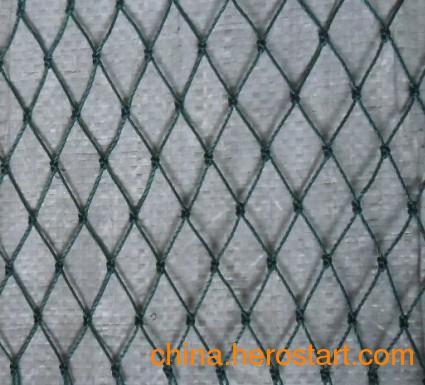 供应聚乙烯网