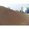全国供应轻质挂膜生物陶粒滤料,建筑用陶粒稀土瓷砂滤料