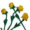 供应玫瑰花