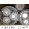 供应国标YJV高压电缆(厂家直销)