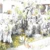 上海市企业、单位、景观水处理公司feflaewafe