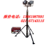 供应GAD506E大型升降照明装置,SFW6110B 上海热销