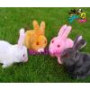 供应offer详细描述:1tz电动前进兔子,地摊热销,电动毛绒兔,蹦蹦跳跳可爱兔,玩具